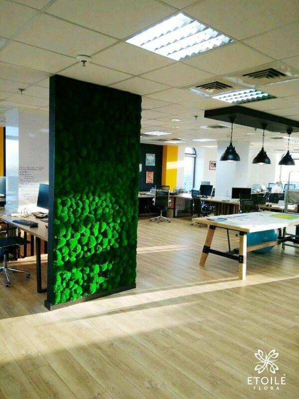 Стабилизированный мох в интерьере офиса
