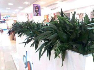 Озеленение промо-стоек бренда «Glo» в торговых центрах