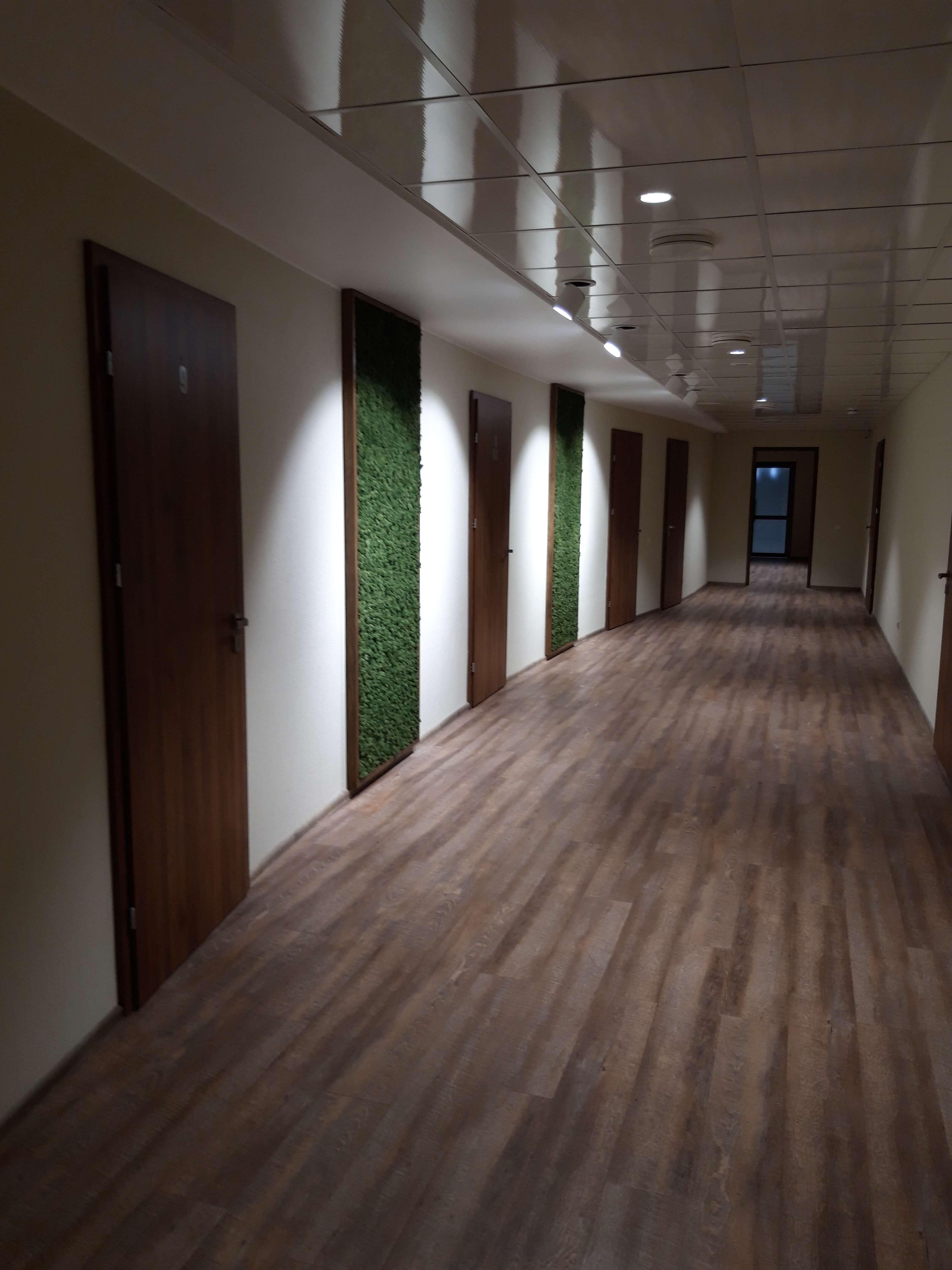Озеленение офиса «Фокстрот»