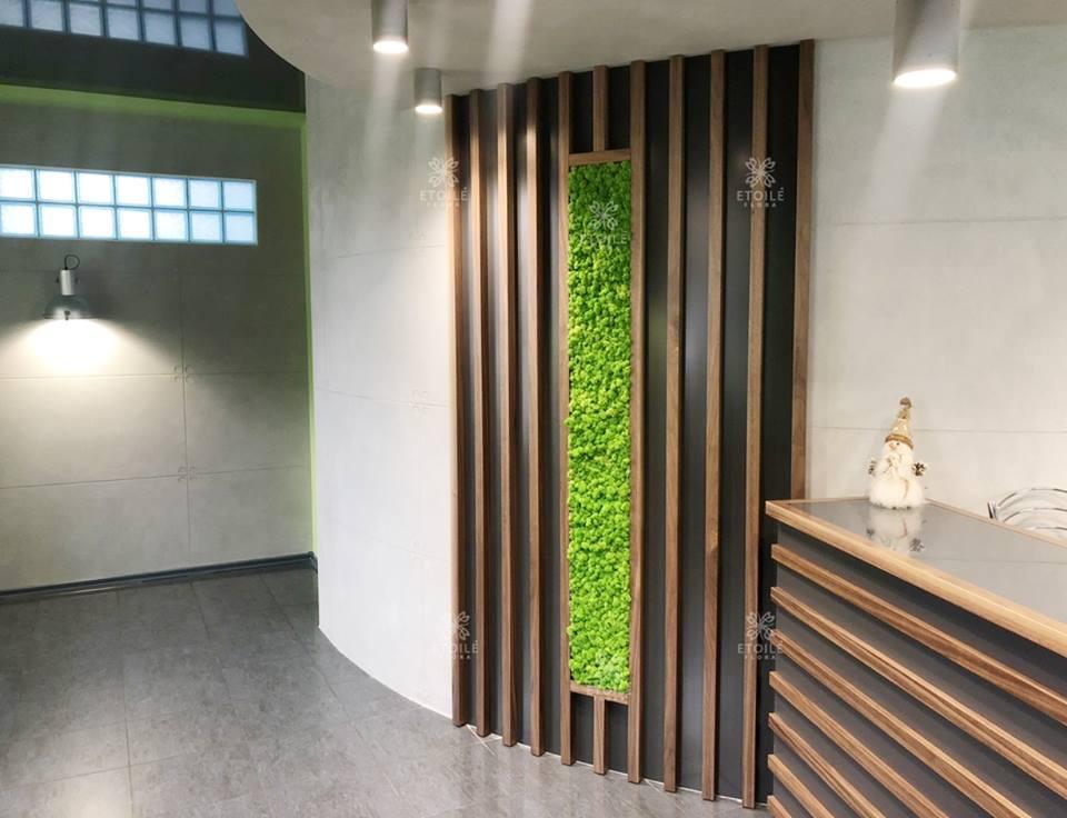 Озеленение интерьера в офисе