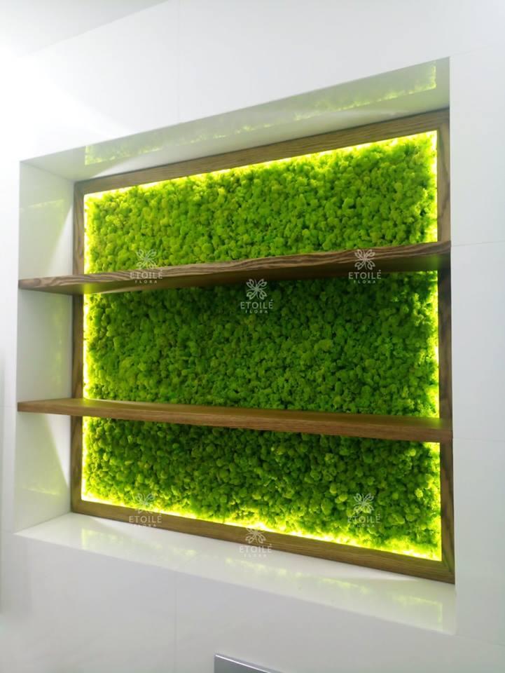 Озеленение гостиной мхом