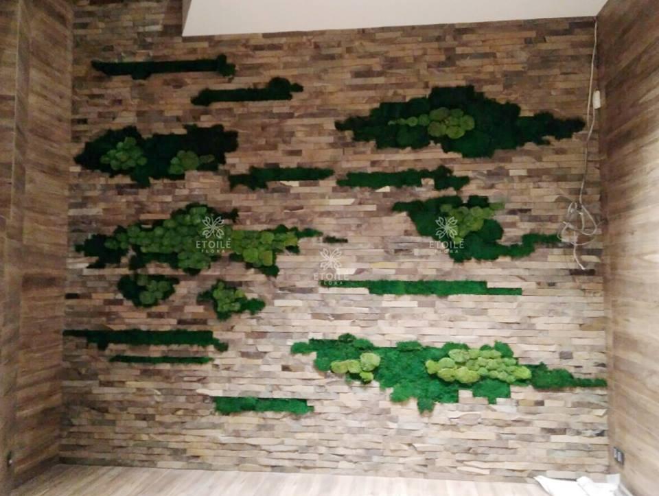 Озеленение стены стабилизированным мхом